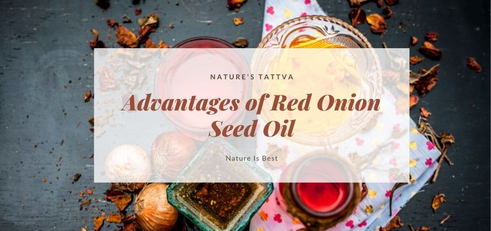 Advantages of Red Onion Seed Oil