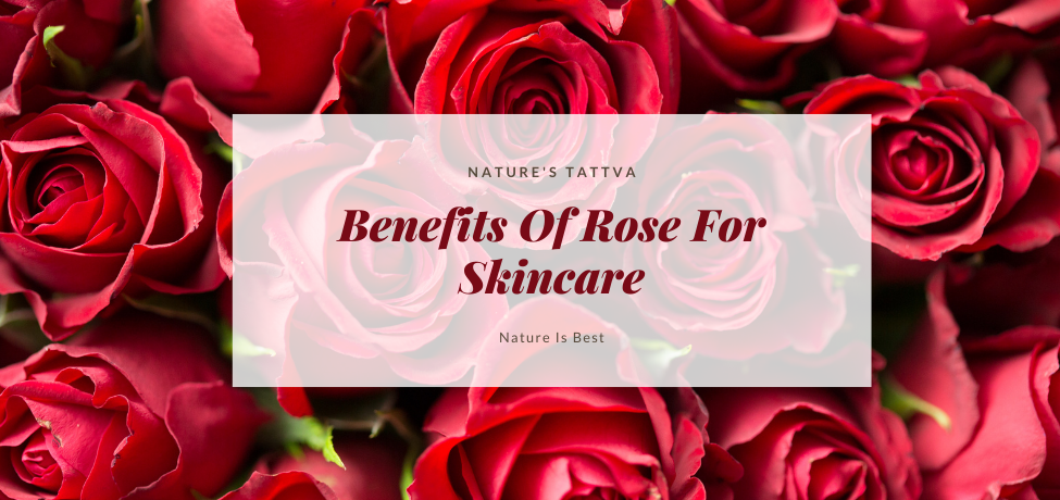 Benefits Of Rose For Skincare
