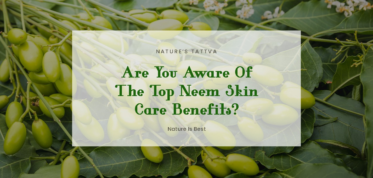Are You Aware Of The Top Neem Skin Care Benefits?