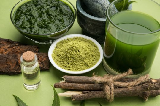 Neem Or Azadirachta used for antimicrobial traits